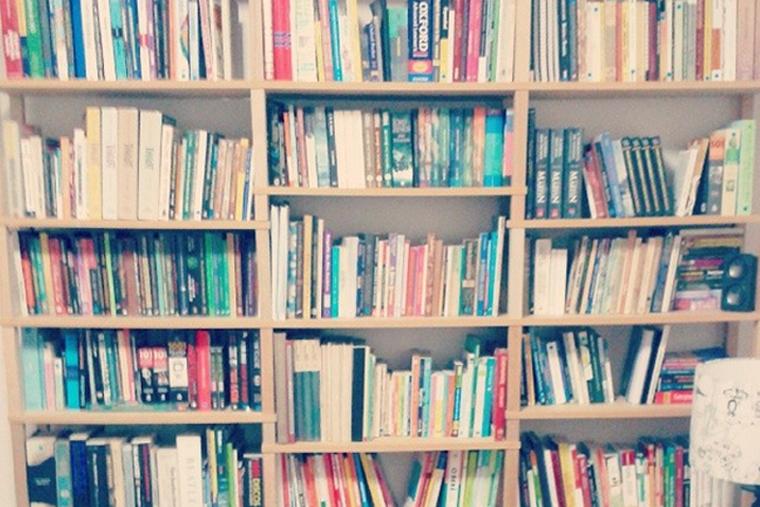 Meus 650 livros... e contando.
