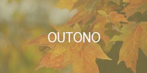 banner-outono